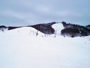 Metsovo1