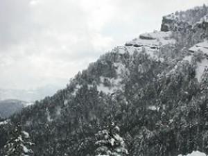 snow565_thumb