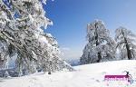 Ενημέρωση Χιονοδρομικών 26-02-2015