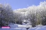 Ενημέρωση Χιονοδρομικών 09-02-2015