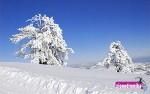 Ενημέρωση Χιονοδρομικών 13-03-2015