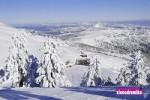 Ενημέρωση Χιονοδρομικών 29-01-2015
