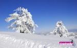 Έγκριση προσλήψεων στο Χιονοδρομικό Kέντρο Βασιλίτσας