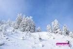 Ενημέρωση Χιονοδρομικών 19-01-2015