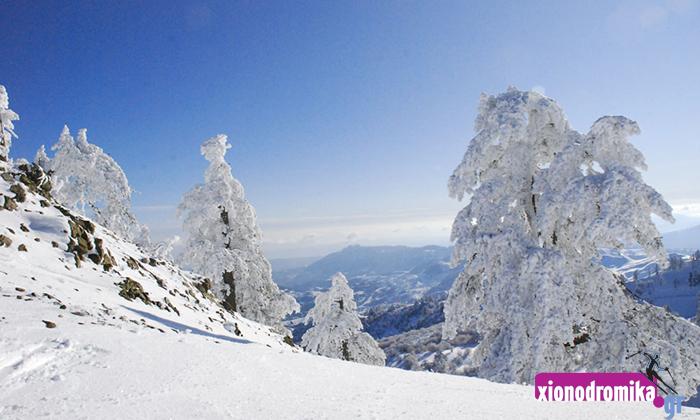 Vasilitsa ski center