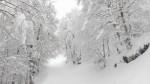 Ενημέρωση Χιονοδρομικών 16.03.2016