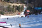 Ενημέρωση Χιονοδρομικών 18-12-2016