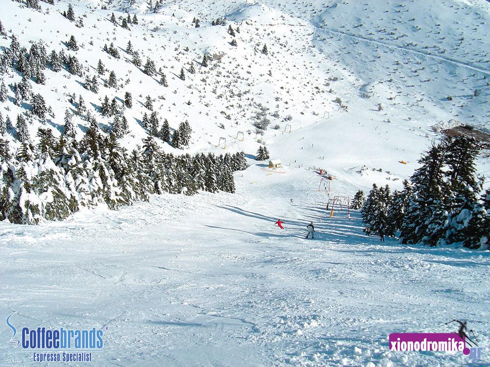 Χιονοδρομικό Κέντρο Μαιναλου