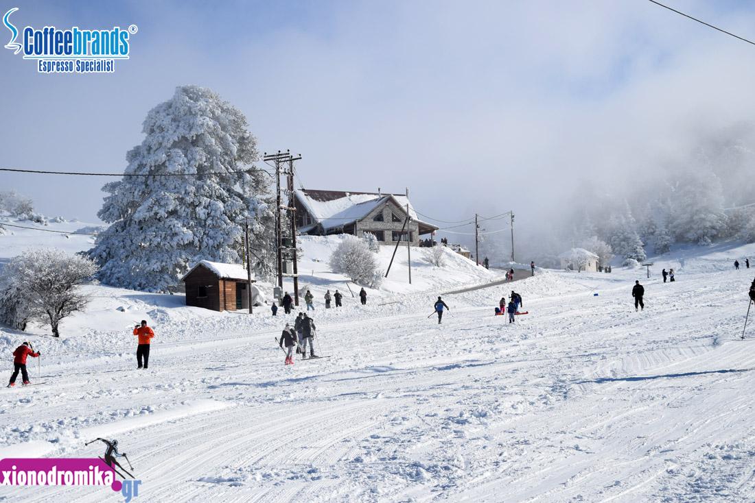 Χιονοδρομικό Κέντρο Ζήρειας