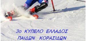 ski-750x354